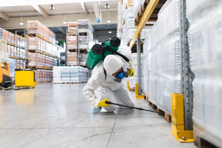 The Importance of Commercial Pest Control in Florida