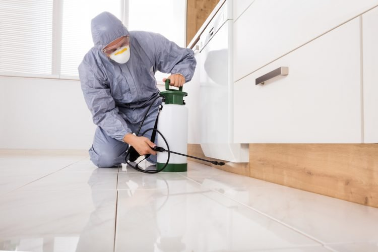 The Importance of Having Residential Pest Control